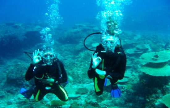 diving-bazaruto-590x390